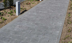 Paving Line Spotted Bluestone soft finish 1