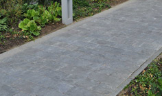 Paving Line Spotted Bluestone soft finish 3