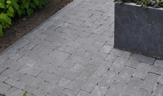 Paving Line Spotted Bluestone soft finish 4