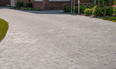 Paving Line Spotted Bluestone soft finish 5